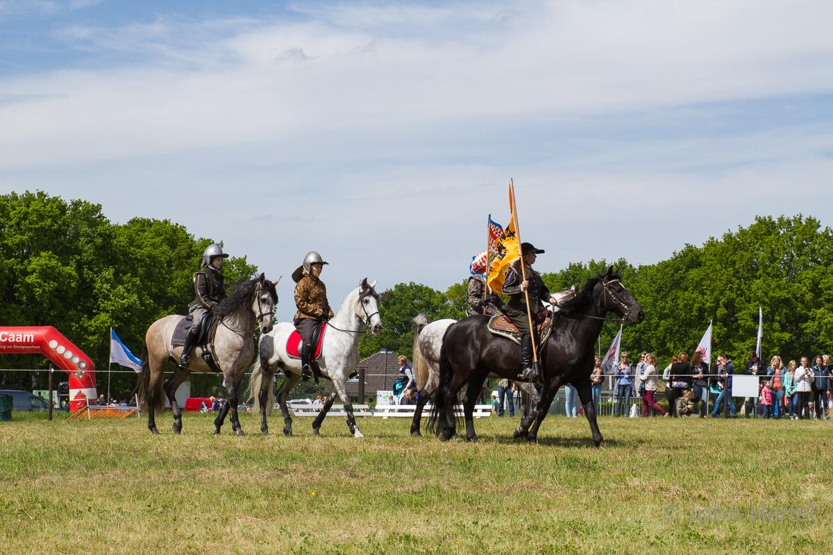Cavalerie_Concours_Halsteren-8