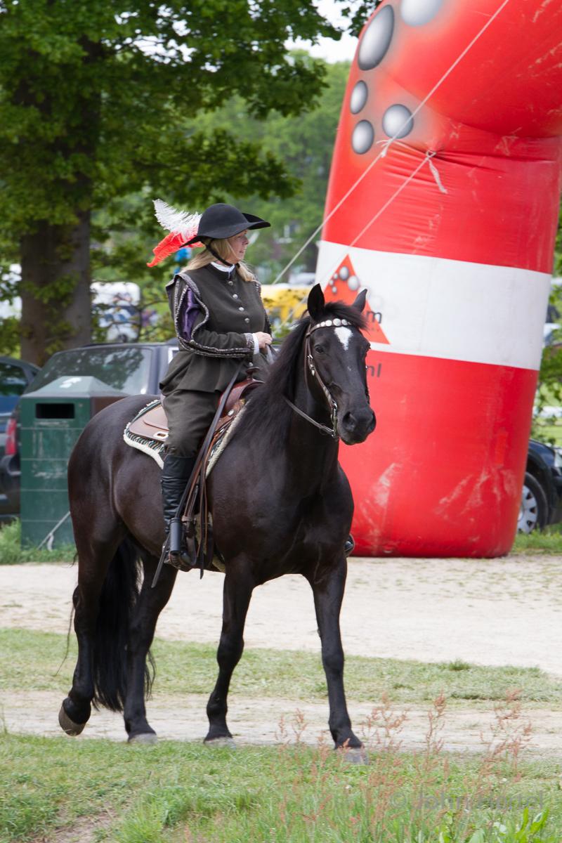Cavalerie_Concours_Halsteren_portrait-2