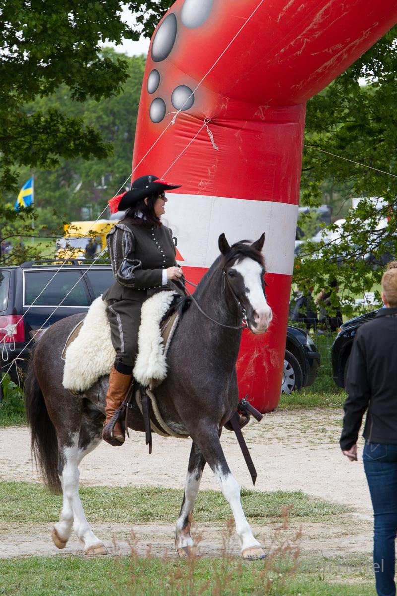 Cavalerie_Concours_Halsteren_portrait